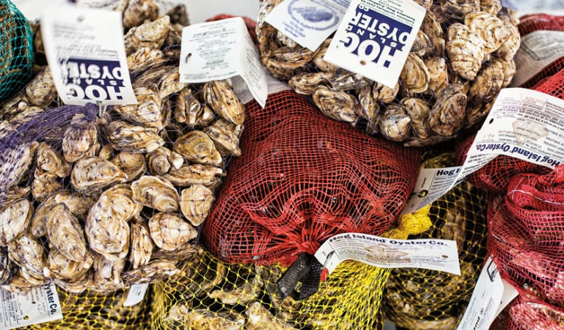 Farmers-Market_HUB-Page_Oysters